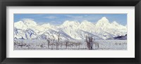 Framed Grand Teton Range in winter, Wyoming, USA