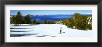 Framed Tourist skiing in a ski resort, Heavenly Mountain Resort, Lake Tahoe, California-Nevada Border, USA