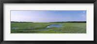 Framed USA, Florida, Jacksonville, Atlantic Coast, Salt Marshes