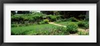 Framed USA, Virginia, Williamsburg, colonial garden
