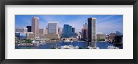 Framed Inner Harbor Federal Hill Skyline Baltimore MD