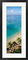 Framed High angle view of palm trees with beach umbrellas on the beach, Waikiki Beach, Honolulu, Oahu, Hawaii, USA