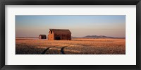 Framed Barn in a field, Hobson, Montana, USA