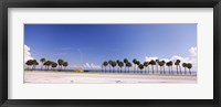 Framed Palm trees at the roadside, Interstate 275, Tampa Bay, Gulf of Mexico, Florida, USA