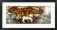 Framed Carousel horses in an amusement park, Seattle Center, Queen Anne Hill, Seattle, Washington State, USA