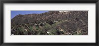 Framed Hollywood Hills, Hollywood, California