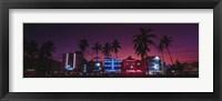 Framed Hotels Illuminated At Night, South Beach Miami, Florida, USA