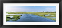 Framed Sea grass in the sea, Atlantic Coast, Jacksonville, Florida, USA