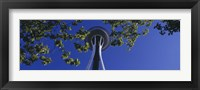 Framed Space Needle Maple Trees Seattle Center Seattle WA USA