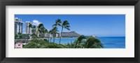 Framed Palm Trees On The Beach, Waikiki Beach, Honolulu, Oahu, Hawaii, USA