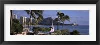 Framed Palm trees on Waikiki Beach, Oahu, Honolulu, Hawaii