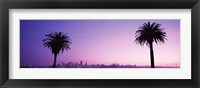 Framed San Francisco skyline between 2 palm trees, California