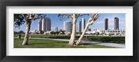 Framed Embarcadero Marina Park, San Diego, California, USA