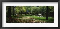 Framed Flowers in a park, Central Park, Manhattan, New York City, New York State, USA