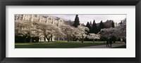 Framed University of Washington, Seattle, King County, Washington State