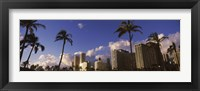 Framed Low angle view of skyscrapers, Honolulu, Hawaii, USA 2010