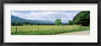 Framed Road Along A Grass Field, Cades Cove, Great Smoky Mountains National Park, Tennessee, USA