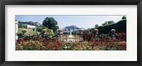 Framed Flowers in a formal garden, Mirabell Gardens, Salzburg, Salzkammergut, Austria