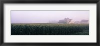Framed Barn in a field, Illinois, USA