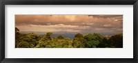 Framed Monteverde Puntarenas Province Costa Rica