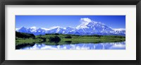 Framed Reflection Pond, Mount Mckinley, Denali National Park, Alaska, USA