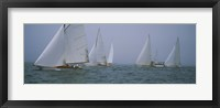 Framed Sailboats at regatta, Newport, Rhode Island, USA