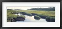 Framed Salt Marsh Cape Cod MA USA