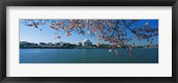 Framed Monument at the waterfront, Jefferson Memorial, Potomac River, Washington DC, USA