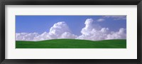 Framed USA, Washington, Palouse, wheat and clouds