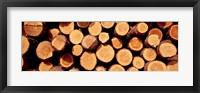 Framed Logs