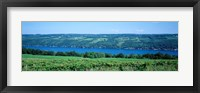 Framed Vineyard with a lake in the background, Keuka Lake, Finger Lakes, New York State, USA