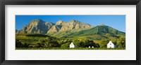 Framed Vineyard in front of mountains, Babylons Torren Wine Estates, Paarl, Western Cape, Cape Town, South Africa