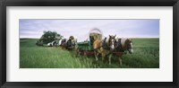 Framed Historical reenactment, Covered wagons in a field, North Dakota, USA