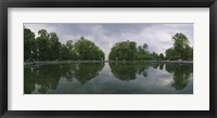 Framed Reflection of trees in a pond, Versailles, Paris, Ile-De-France, France
