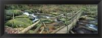 Framed Leap of Faith broken bridge, Becky Brook, Becky Falls, Bovey Tracey, Dartmoor National Park, Devon, England