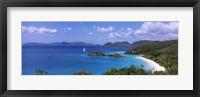Framed Trees on the coast, Trunk Bay, Virgin Islands National Park, St. John, US Virgin Islands