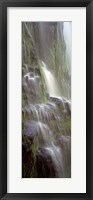 Framed Waterfall in a forest, Proxy Falls, Three Sisters Wilderness Area, Willamette National Forest, Oregon