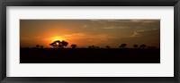 Framed Sunset over the savannah plains, Kruger National Park, South Africa