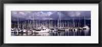 Framed Boats at a harbor, Santa Barbara Harbor, Santa Barbara, California, USA