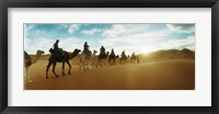 Framed Tourists riding camels through the Sahara Desert landscape led by a Berber man, Morocco