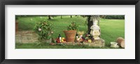 Framed Wine grapes and foods of Chianti Region of Tuscany at private estate, Italy