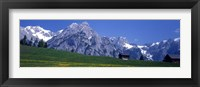 Framed Field Of Wildflowers With Majestic Mountain Backdrop, Karwendel Mountains, Austria