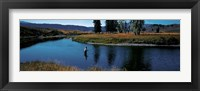 Framed Trout fisherman Slough Creek Yellowstone National Park WY