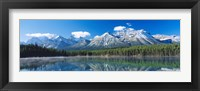 Framed Herbert Lake Banff National Park Canada