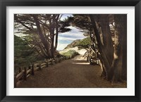 Framed Big Sur