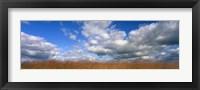 Framed Hayden Prairie, Iowa