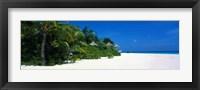 Framed Beach in The Maldives