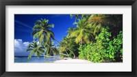 Framed Palm Beach The Maldives