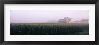 Framed Barn in a field, Illinois, USA
