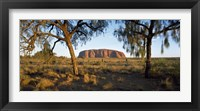 Framed Ayers Rock Australia